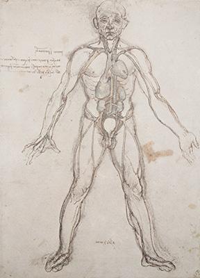 写真:ダ・ヴィンチ解剖手稿
