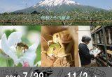 弘前大学資料館第23回企画展「弘前大学と昆虫学」を開催